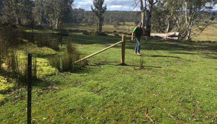 Bronte Fencing photos 2017 1873